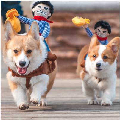 Superhero Dog Costumes forHalloween