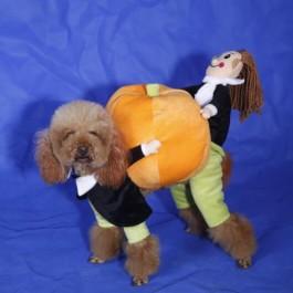 ali pumpkin